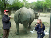 Zoo Cologne